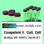 Customized Competent <i>E. coli</i>