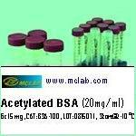 Bovine Serum Albumin (BSA) Acetylated