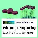 Primers for Sequencing