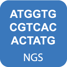 NGS Library Quantification Kit