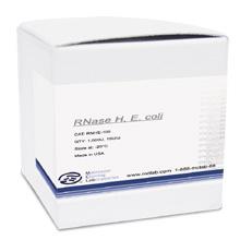 RNase H, <i>E. coli</i>